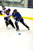 Trevor Sowers Photography BC AA Ringette Provincials 2011 photo 6